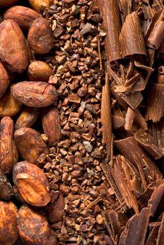 Cacao into Chocolate
