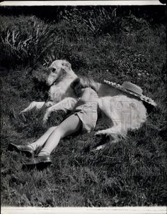 Little Susan Hinds and her Borzoi, Jasmine