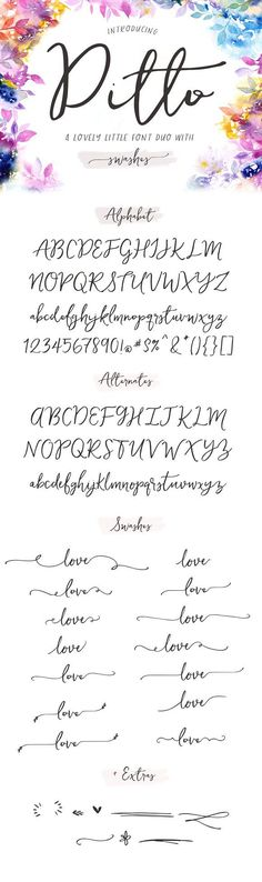 Ditto Font + Swashes by Angie Makes on @creativemarket