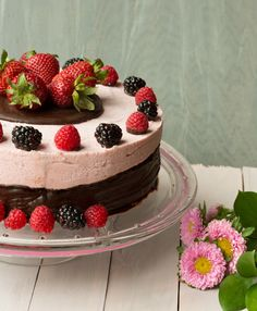 : Berry Mousse Chocolate Cake