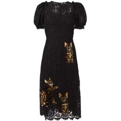 Dolce & Gabbana Bengal cat patch lace dress (£4,255) ❤ liked on Polyvore featuring dresses, black, flared dresses, short lace dress, cat print dress, dolce gabbana dress and lace slip dress
