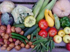 Long Term Food Storage Methods