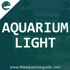 32 best aquarium light tag images fish tanks aquarium lighting