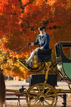 Carriage driver in Williamsburg, Va. Another been there but girls have not!