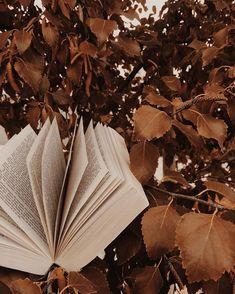 aesthetic brown beige rustic leaves autumn instagram colors backgrounds pink wallpapers september idei minte din afkomstig