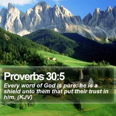 Proverbs 30:5 Every word of God is pure: he is a shield unto them that put their trust in him. (KJV)  #Inspired #Gracious #Theology #Pray #Thankful #InstaPray #GodsChristianWarriors http://www.bible-sms.com/