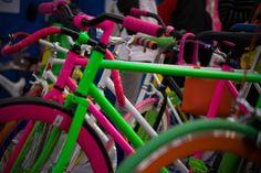 BiciLive Expo 2014, Roma