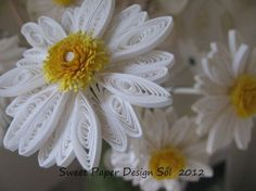 Paper Quilled 3D Daisy Flower for