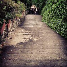 Progetto Instagram iPhone: Paesaggi, Firenze. Art Director: Lapo Secciani Photographer: Lapo Secciani