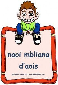 Cén Aois Thú? Irish Language, Teaching Resources, Classroom, Learning, Teacher Stuff, School, Languages, Celtic, Ireland