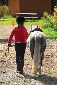 Have you considered alternative therapies to manage ADHD symptoms. Learn about equine-assisted therapy here.