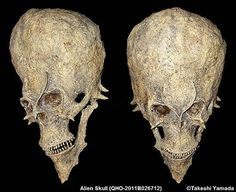 MYSTERIOUS 'ALIEN-LIKE' SKULLS FOUND IN AFRICA - 7tales.net - different point of view
