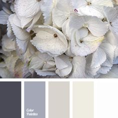 """nude"" color, almost white color, beige color, brown shades, cream beige, gray color, gray shades, lead color, light-brown color, pinky-beige color, silver color, steel color."