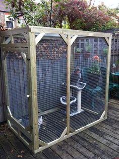 51 Outdoor Cat Enclosures Your Cat - 27 Elegant Diy Cat Enclosure Inspiration Outside Cat Enclosure, Diy Cat Enclosure, Pet Enclosures, Outdoor Cat Run, Indoor Outdoor, Outdoor Cat House Diy, Cat Crate, Wooden Cat, Cat Room
