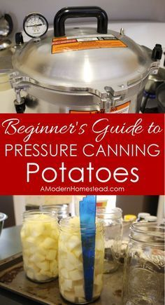 Women's Special: Four-Strategies Flowers Can Modify Your Working Day-To-Day Lifestyle Beginner's Guide To Pressure Canning Potatoes Man, Those Are Super Detailed Steps, But I Really Think I Can Actually Do This Pressure Canning Recipes, Canning Tips, Home Canning, Pressure Cooker Recipes, Pressure Cooking, Canning Potatoes, Canning Vegetables, Veggies, Canning Food Preservation