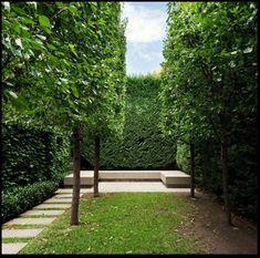 jardin geométrico