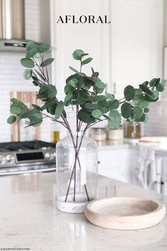 Add a touch of green to your neutral home decor with artificial silver dollar eucalyptus stems. Plop just a few in a vase for a fresh-cut look that will add an instant elevation to the room. Shop trending artificial greenery stems and fake plants at Afloral.com. Silk Plants, Fake Plants, Artificial Plants, Hanging Plants, Nandina Plant, Cork, Faux Olive Tree, Eucalyptus Garland, Eucalyptus Leaves