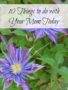 10 Things to do With Your Mom...Today - As adults we don't always spend time with our mother's. It doesn't take a lot of time and energy to show your mother that you care.