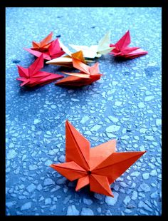 Why not try to make a beautiful maple origami? This is a fairly good idea,With us, making a beautiful maple origami Origami Diy, Origami And Kirigami, Origami Paper Art, Origami Folding, Origami Design, Paper Folding, Paper Crafts, Dollar Origami, Origami Ball