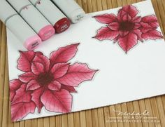 Copics on Poinsettias Copic Marker Art, Copic Pens, Copic Sketch Markers, Copic Art, Copics, Prismacolor, Copic Markers Tutorial, Copic Drawings, Color Of The Day