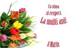 6229211 8 Martie, Lady