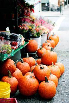Autumn: a beautiful post from rockstar diaries about enjoying autumn