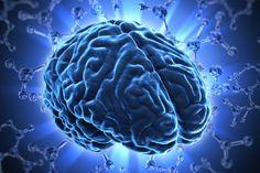 """Os cientistas já sabem disso há anos. No entanto, hoje em dia os pesquisadores aprenderam uma outra parte da verdade: A fim de aprender alguma coisa, ainda mais importante do que praticar é a capacidade de desaprender, ou para quebrar as velhas conexões neurais. Isto é chamado de """"poda sináptica""""."""
