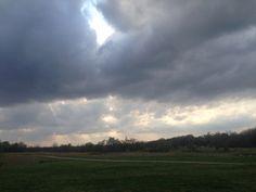 Shelby farms sky