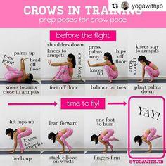 """1,929 Likes, 53 Comments - Yoga Asanas ॐ Tips & Tutorials (@yogaalignment) on Instagram: """" #Kakasana ↔ #CrowPose on @yogaalignment . . #yogatutorial with @yogawithkalyani ・・・ Today's…"""""""