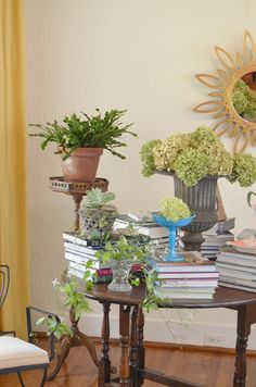 Nature, books & style - a vignette created by artist-blogger Jennifer Webb in her home