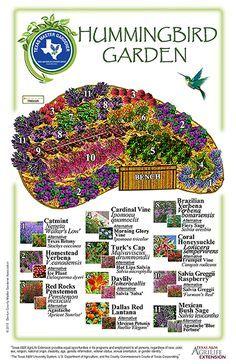 10 Butterfly Garden Design Ideas, Elegant as well as Gorgeous - New ideas Design Jardin, Garden Design, Easy Garden, Lawn And Garden, Hummingbird Plants, Hummingbird House, Hummingbird Nectar, How To Attract Hummingbirds, Flowers For Hummingbirds