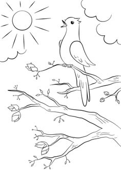 Spring Bird coloring page from Spring category. Select from 26545 printable crafts of cartoons, nature, animals, Bible and many more. Coloring Pages Nature, Spring Coloring Pages, Cute Coloring Pages, Free Printable Coloring Pages, Coloring Book, Diy Embroidery Flowers, Hand Embroidery Patterns Free, Art Drawings For Kids, Bird Drawings