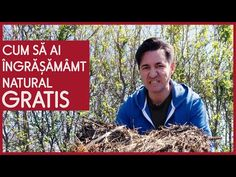 CUM SĂ AI ÎNGRĂȘĂMÂMT NATURAL GRATIS - CASEBUNE.RO - YouTube Garden Compost, Composting, Case, Youtube, Lawn, Plant, Biology, Youtubers, Youtube Movies