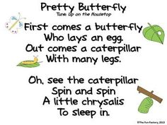 Learning about Butterflies-Spring Butterfly/Caterpillar Poems, Songs, Finger-Plays Preschool Poems, Kids Poems, Preschool Music, Preschool Science, Preschool Lessons, Kindergarten Poems, Children Songs, Preschool Learning, Kindergarten Classroom