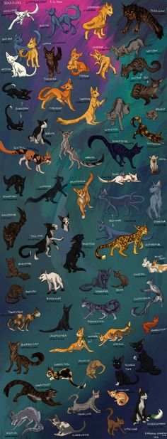 Warriors: Cats from sagas 1-2 by Korrenraa on DeviantArt