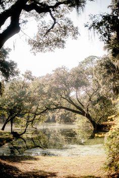 Historic Charles Towne Landing in Charleston, South Carolina. #Lowcountry #Charleston #SouthCarolina #GardenandGun