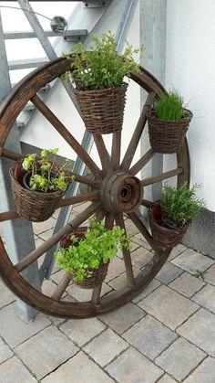 Wagenrad als Kräutergarten