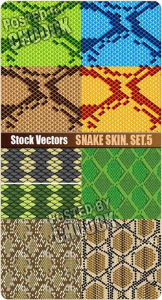 Snake skin. Set.5 - Stock Vector