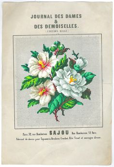 Hibiscus and Camelia. Vintage & hand painted cross stitch charts | The Savvy Crafter