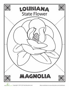 Worksheets: Louisiana State Flower What's your favorite flower? Louisiana's favorite is the magnolia. Color in this flower and give it a background worthy of its pretty petals. Louisiana Map, Lafayette Louisiana, Louisiana History, Louisiana Recipes, Southern Comfort, Crab Cakes, Gumbo, Louisiana Crunch Cake, Mardi Gras
