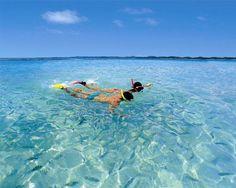 Abrangendo cerca de 400 mil hectares a Costa dos Corais constitui uma das maiores barreiras de corais do mundo. Fica no litoral norte de Alagoas, compondo um complexo e exuberante ecossistema marinho com cerca de 135 km de extensão situado entre os municípios alagoanos de Paripueira e Tamandaré. Além de ser um dos mais extensos trechos de arrecifes de corais brasileiros, também estão entre os mais preservados, compondo a maior área de proteção ambiental do país. Todo o projeto de preservação…