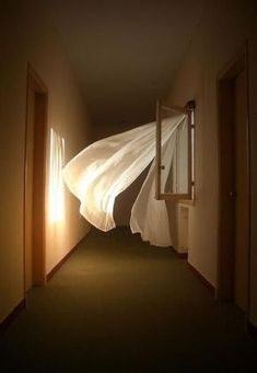 Photo by Bastien Hall. This is dreamy and scary. Lovely white curtains blowing in the wind.in what appears to be a very drab and depressing office or industrial space. Aesthetic Photo, Aesthetic Pictures, White Curtains, Light And Shadow, Aesthetic Wallpapers, Windows, Lights, Photos, Photography