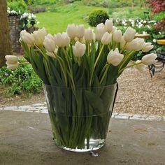 Easy DIY centerpieces - LOVE white tulips