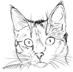 cat clip art black and white | Cat Face clip art - vector clip art online, royalty free & public ...