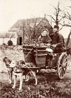 vintage everyday: 25 Interesting Vintage Pictures of Dog Carts and Milk Women in Belgium from the Late and Early Centuries Antique Photos, Vintage Pictures, Vintage Photographs, Old Pictures, Amazing Pictures, Dog Bike Basket, Biking With Dog, Vintage Dog, Mundo Animal