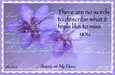 Words~From Angels at My Door on Facebook