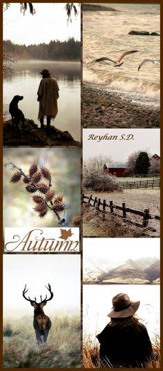 MOODBOARD | Autumn Brown by Reyhan Seran Dursun