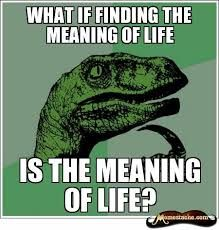 PART Write a Philosoraptor Question! PART Teacher redistributes the Philosoraptor questions and students answer the question they have been given. Funny Stuff, Funny Pics, Funny Humor, Funny Things, Funny Images, It's Funny, Math Humor, Memes Humor, Class Memes