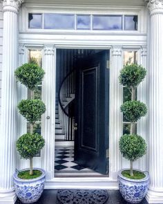 Displaying Your Collection of Blue and White Porcelain Now this is my kind of entrance! Those beautiful topiaries in blue and white chinoiserie planters, Garden Entrance, Entrance Doors, Front Doors, Front Porch, Outdoor Spaces, Outdoor Living, Outdoor Decor, Land Before Time, Charleston Homes