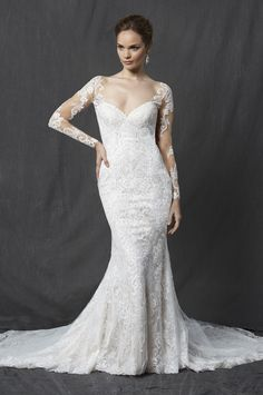 Long sleeve sweetheart full lace sheath wedding dress with illusion sleeves and low back. | Michelle Roth | Style: Walden